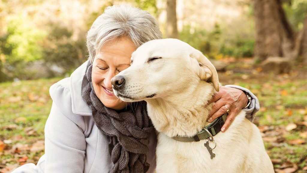 senior with pet labrador_senior choices online